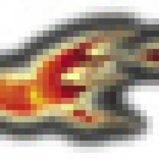 suikoden falcon rune