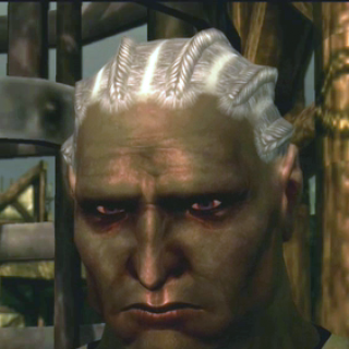 Sten Dragon Age Origins Qunari