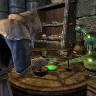 TES V: Skyrim - Alchemy